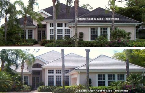 roof a cide west distributors expert roof cleaning