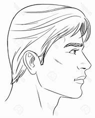 best profile drawing ideas and images on bing find what you ll love
