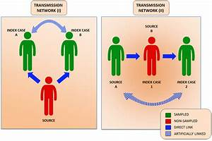 Viruses | Free ... Hepatitis A Transmission