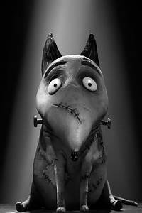 Sparky Frankenweenie; Tim Burton | pets | Pinterest | Tim ...