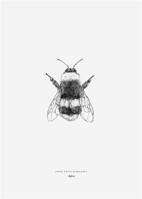 Bumblebee in 2019 | Bumble bee tattoo, Bee tattoo, Bumblebee drawing