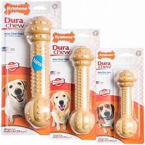 nylabone dura chew products online at pet mountain With dog chew toys that last