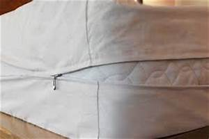 Do mattress encasements work against bed bugs for Do bed bug encasements work