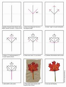 How to Draw a Maple Leaf - Art Projects for Kids