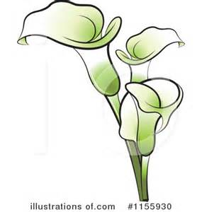 black and white calla clipart