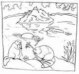 Coloring Beaver Pond Printable Beavers Dam Habitat Animals Malvorlagen Biber Building Ausdrucken Colouring Animal Dibujos Castores Drawing Ausmalbild Tiere Colorare sketch template