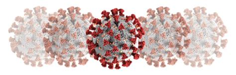 coronavirus covid  emergency decontamination ir