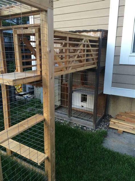 awesome outdoor cats walkway  house