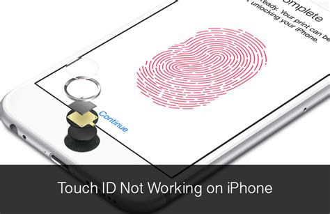 touch l not working touch id not working on iphone 6 6 plus here is how to fix it