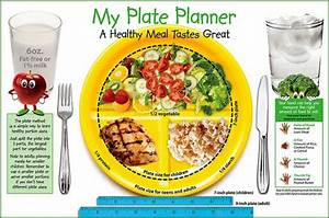 My Plate Healthy Food Choices For Balanced Meal Food   My