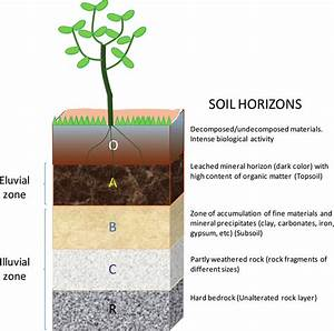 Schematic Drawing Of The Soil Profile