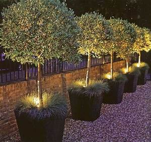 landscape lighting in planters love this outdoor With outdoor pot lights for sale