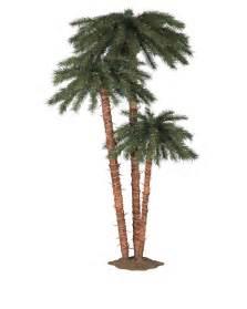 palm trees treetopia