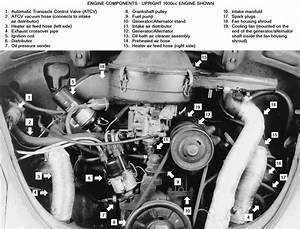 1967 Vw Beetle Engine Diagram 41070 Enotecaombrerosse It