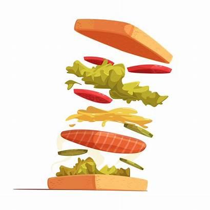 Sandwich Ingredients Composition Vector Vectors Vectorstock Clipart