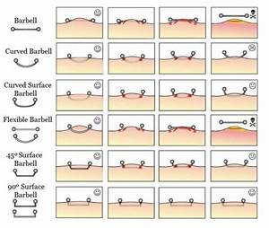 Gallery For  U0026gt  Body Piercing Types Diagram  With Images