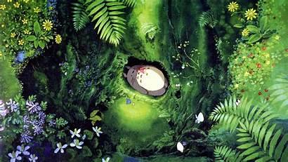 Totoro Anime Wallpapers Background Neighbor Pixelstalk Neighbour