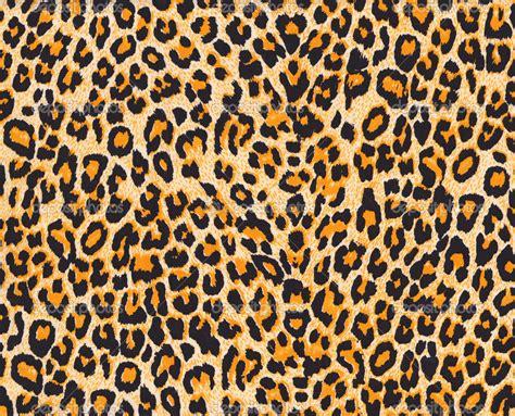Cheetah Print Desktop Wallpaper Leopard Skin Wallpapers Pattern Hq Leopard Skin Pictures 4k Wallpapers