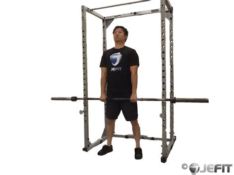 barbell rack pulls exercise  jefit  android  iphone workout fitness