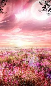 Fantasy Field Wallpaper and Background Image | 1917x1502 ...