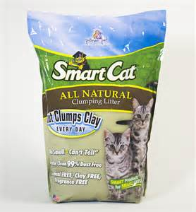 dust free clumping cat litter 6505 smartcat all clumping litter by pioneer pet
