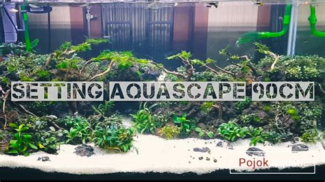 Setting Aquascape setting aquascape 90cm pojok aquatic