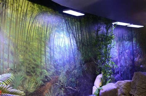 aquarium 233 clairage led photos orphek