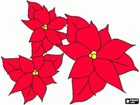 Dibujo Flor De Nochebuena
