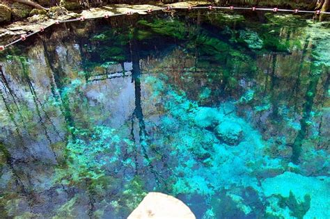 fanning springs state park fanning springs state park must see and do pinterest