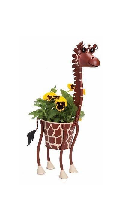 Planters Animal Giraffe Indoor Pots Garden Plant