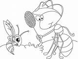 Anthill Ant Template Coloring Templates Sketch Mosquito sketch template