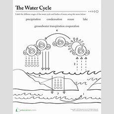 Water Works  Worksheet Educationcom