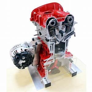 Petrol Engine Cutaway Model Dohc Fsi For Sale
