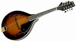 Mandolin  The Melodymaker