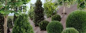 Bache Sol Jardin : bache de jardin mauvaises herbes toile paillage pas cher chromeleon ~ Teatrodelosmanantiales.com Idées de Décoration