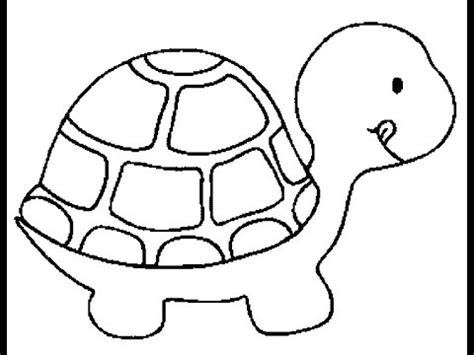 drawing  sea turtle   draw easy  youtube