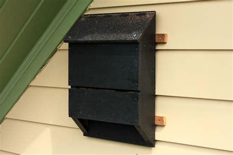 how tuesday build a bat house etsy blog
