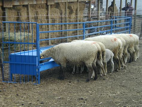 Livestock Feeder by Sydell Sheep Goat Large Hay Grain Feeders Hay Racks