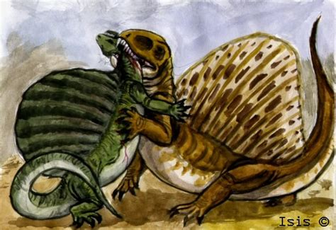 Dimetrodon By Isismasshiro On Deviantart