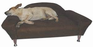 Dog beds bed bedding petco you me chewsy snoozer comfort for X large dog sofa bed