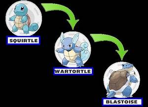 Pokemon Squirtle Evolution Names Images | Pokemon Images