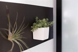 Papier Peint Magnétique : r aliser un support de plantes avec ferflex le papier ~ Premium-room.com Idées de Décoration
