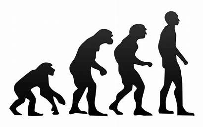Evolution Revolution Difference Between Human Definition Meaning