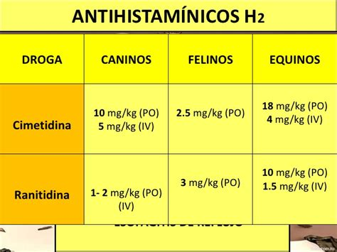 Cytotec Experiencia Cytotec Uso Gastritis Prednisone Prednisolone Posologie