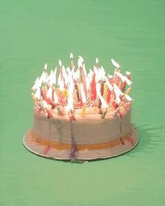 Cake GIFs - Find & Share on GIPHY