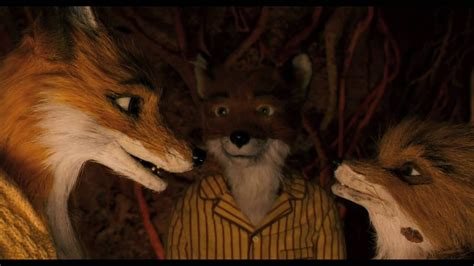 fantastic  fox official theatrical trailer youtube