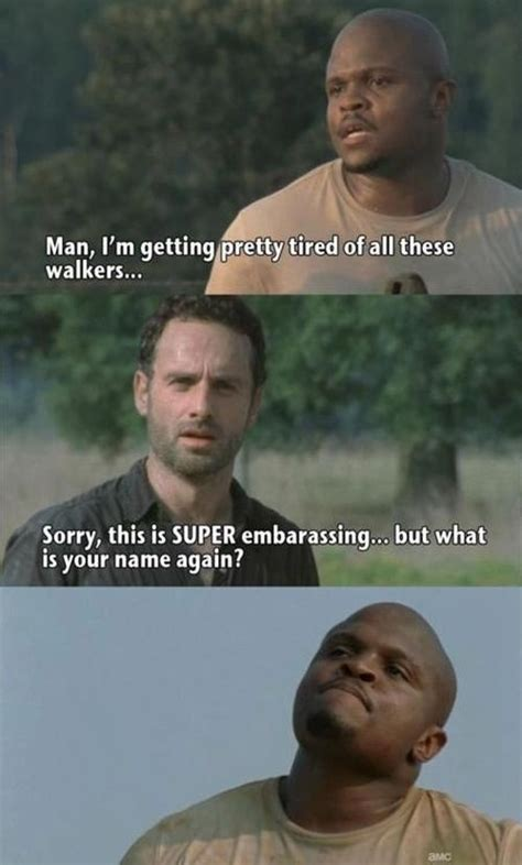 Best Walking Dead Memes - the best memes from season two of the walking dead fun