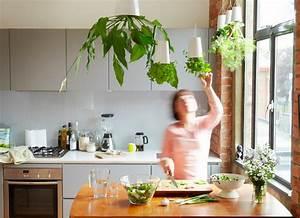 Jardiniere Interieur : 1001 id es jardini re d 39 int rieur cultivez votre ~ Melissatoandfro.com Idées de Décoration