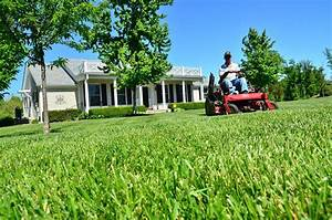 Tondre La Pelouse Sans Ramasser : conseils d 39 entretien pour la pelouse ~ Melissatoandfro.com Idées de Décoration