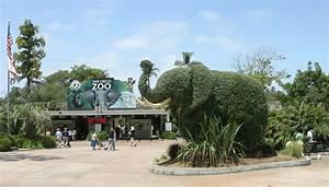 Zoo - Wikipedia
